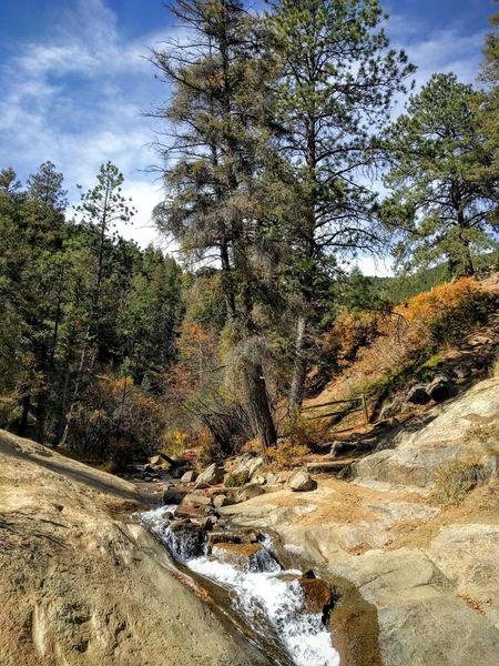 Fall Nature Outdoors Colorado