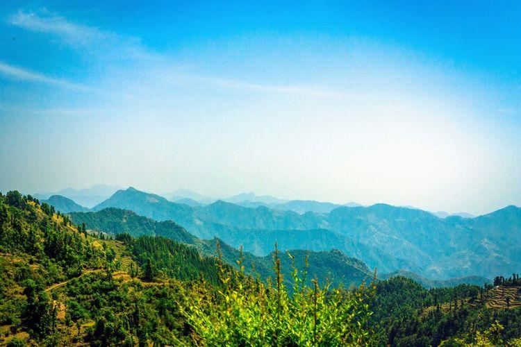 Nature Himayan Range Green Mussoorie Travel Beautiful Nature