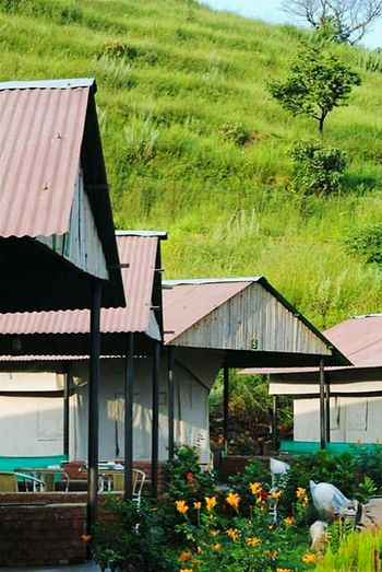 Panchgani, Maharashtra,india Hillside Homes India Tree Growth No People Built Structure Nature House Green Color Plant Architecture Outdoors Building Exterior Day Water