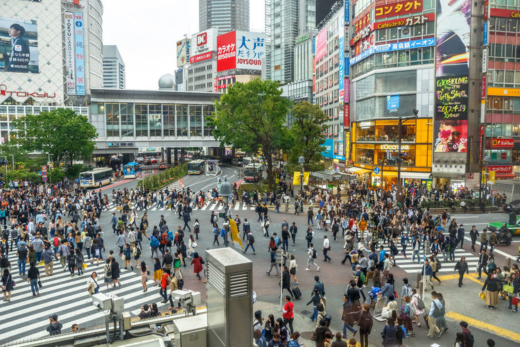 Tokyo, Japan: aerial view from Occitane Cafe of unidentified pedestrians in Shibuya Crossing, one of the busiest crosswalks in the world.Shibuya Crossing a popular attraction in Tokyo City Crosswalk Japan Japanese  Japanese Culture Road Shibuya Shibuya Crossing Tokyo Tokyo,Japan Traffic Traffic Jam Aerial View Architecture Building Exterior Built Structure City City Street Cityscape Commuter Crosswalks Crowd Group Of People High Angle View Large Group Of People Mode Of Transportation Modern Motion Office Building Exterior Outdoors Pedestrians Pedestrians Walking People Popular Photos Real People Road Shibuya Station Skyscraper Street Transportation Walking