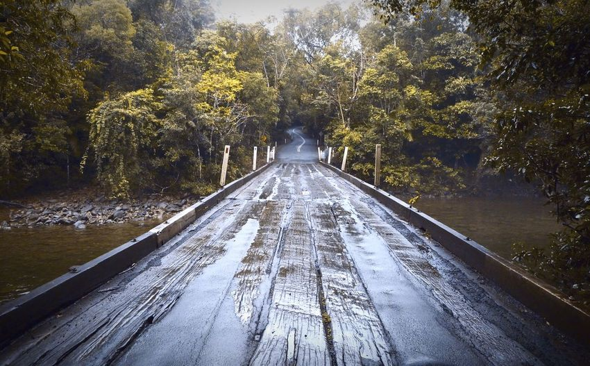 Road to nowhere Road Forest Travel Photography Destinations Roadtonowhere Road Trip No People Outdoors Adventure Bridge Intothewoods Jungle Rain Forest River An Eye For Travel