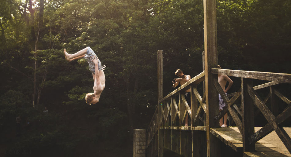 Friend Photographing Man Diving From Wooden Bridge Against Trees In Forest