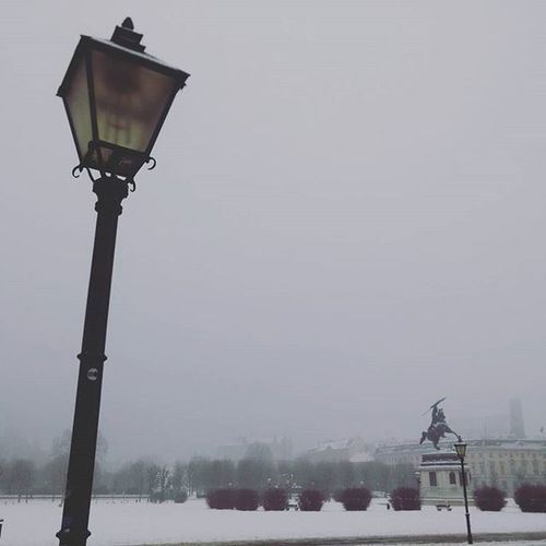 Even the lampposts in Vienna are beautiful! ❄☁