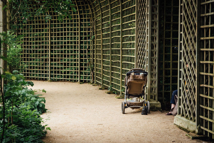 Abandoned Pushchair Stroller Pathway Park - Man Made Space Outdoors Greenery Garden Park Bench Walkway Blooming