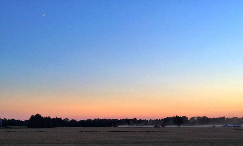 Get ur harvest on SimcoeCounty Harvest EyeEmBestPics Sky Eye4photography  Sunset
