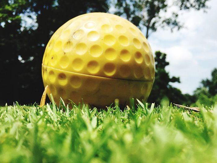 Close-Up Of Golf Ball On Grassy Field
