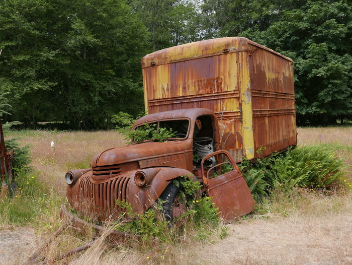 Business Stories Overgrown Abandoned Bad Condition Damaged Obsolete Overgrown And Beautiful Overgrowth Transportation
