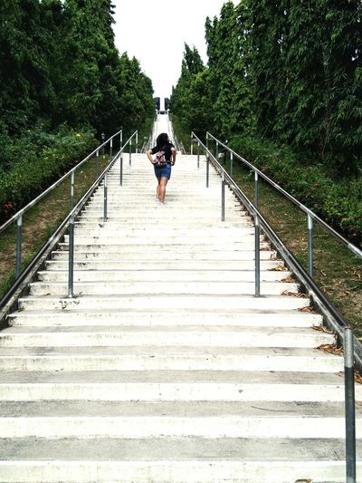 Railing Steps Full Length One Person Steps And Staircases Rear View The Way Forward Adults Only Only Women Adult Bridge - Man Made Structure Outdoors One Woman Only Day Lifestyles Women Footbridge Real People People Tree An Eye For Travel