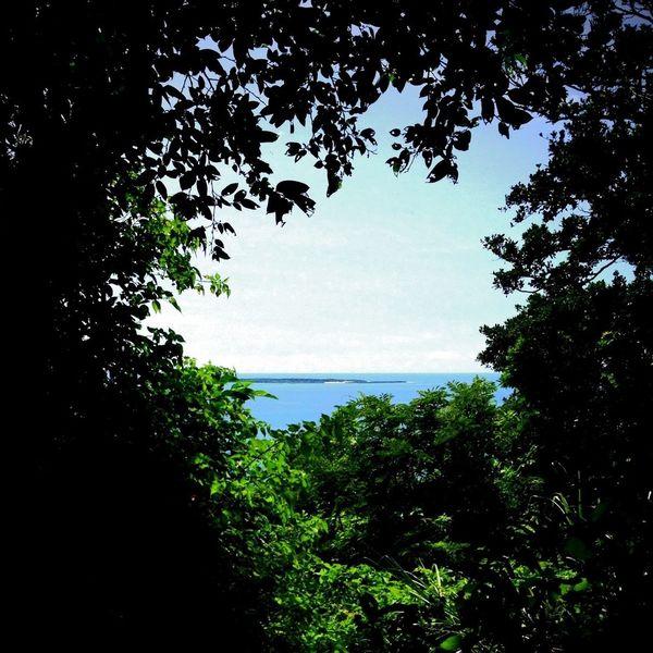 Summer Island Sea