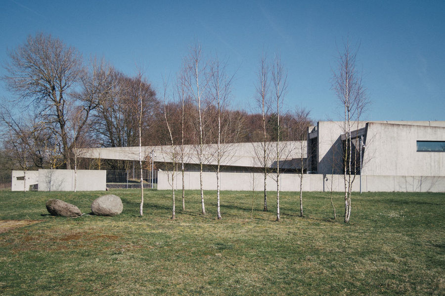 Hidden Modern Animal Animal Themes Architecture Bare Tree Barrier Boundary Concrete Day Domestic Animals Environment Fence Field Grass Hidden Land Livestock Mammal Nature No People Outdoors Plant Sky Tree