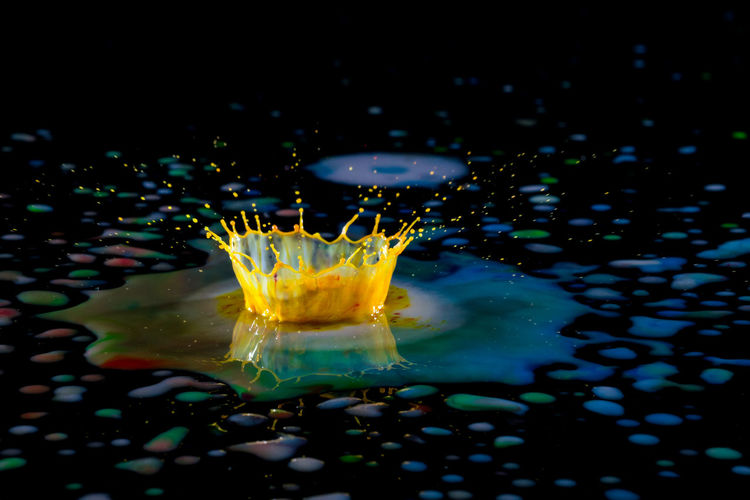 Beauty In Nature Black Background Close-up Day Drink Drop Food And Drink Freshness High-speed Photography Indoors  Liquid Motion Nature No People Refreshment Water