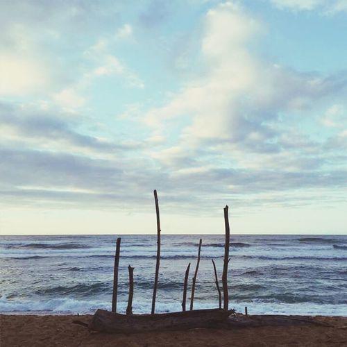 Nature Scenics Beach Life Is A Beach First Eyeem Photo