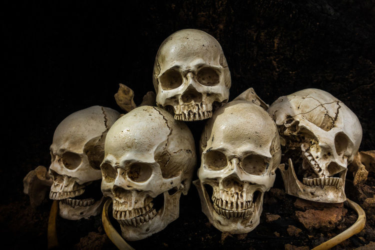 Still life image of Skull and bones in the pit or in the scary graveyard with treasure laid together in the and lonely while sundown or late evening. Concept of wealthy dead. The Past Indoors  Skull History Mystery People Spooky Skeleton Human Bone Human Body Part Fear Horror Human Skeleton Bone  Human Skull Architecture Warning Sign Black Background