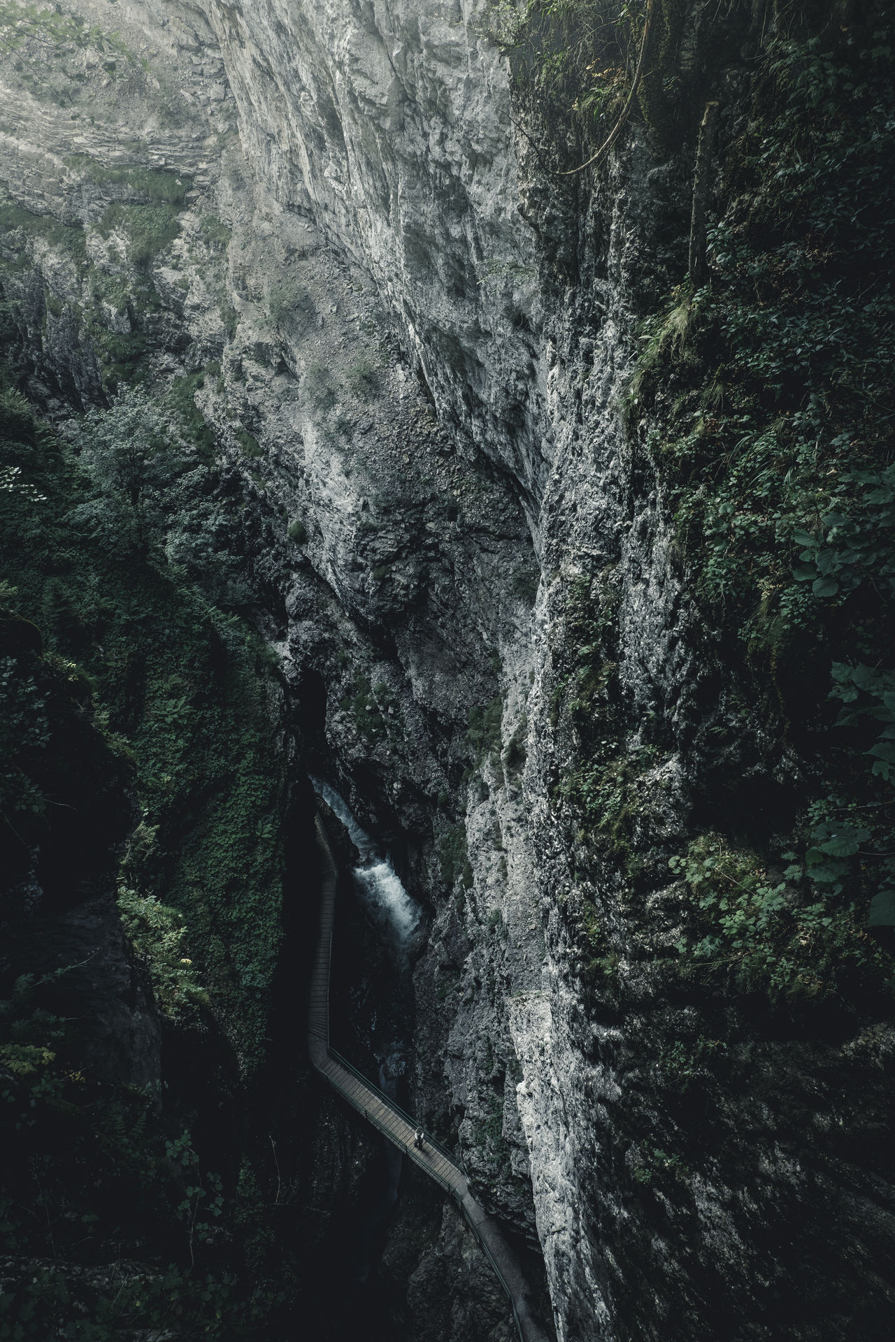 waterfall, motion, flowing water, forest, water