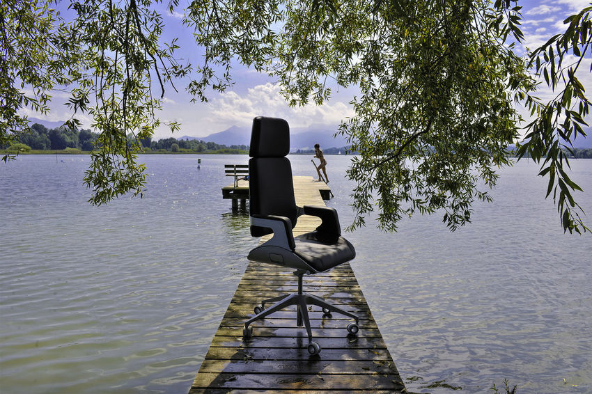 Office Day Lake Nature Office Summer Outdoor Office Outdoors Tree Water