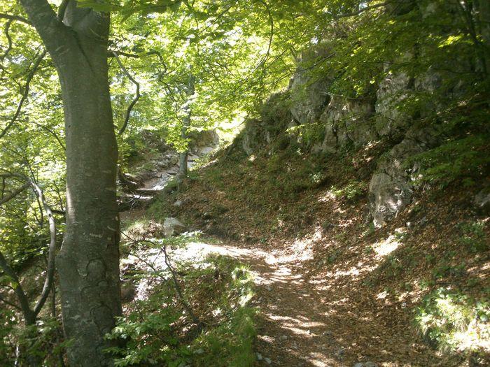 Esino Lario (LC) frazione Cainallo - Grigna settentrionale - segnavia 25 Trekking