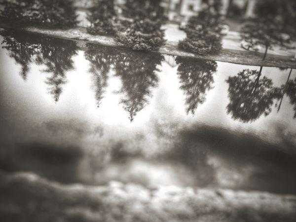 Reflections Blackandwhite Black & White Iphonegraphy Iphone6 Water Reflections Reflection Reflections