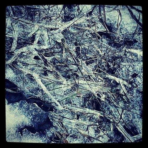 Icestructure on grass Winter Water Ice Landcard abstract structure art naturestyle natureporn blue