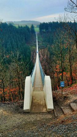 Hunsrück Bridge Nature Vally