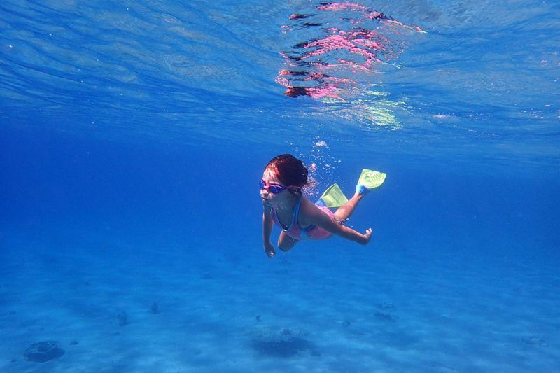 People Girl Child Child Underwater Water Sea Sport Swimming Aquatic Sport UnderSea Adventure One Person Leisure Activity Nature Exploration Blue Vacations Trip Holiday