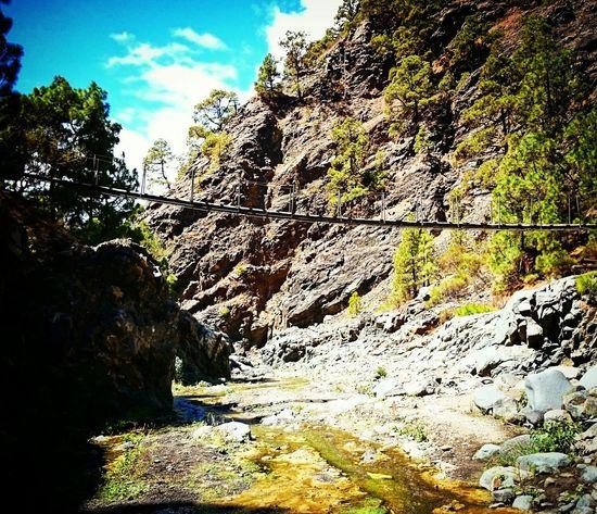 Beautiful Nature Canary Islands EyeEm Best Shots - Landscape EyeEm Best Shots - Nature Bridge EyeEm Best Shots EyeEmBestPics EyeEm Nature Lover Laislabonita SPAIN