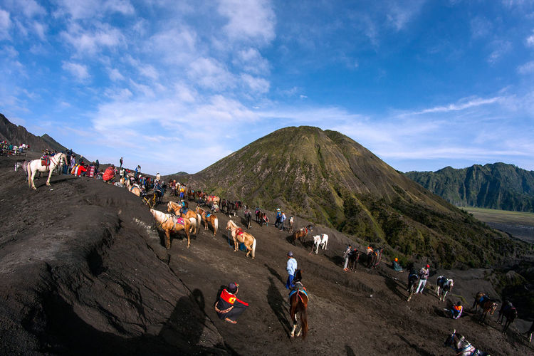 People and horses on mountain against sky