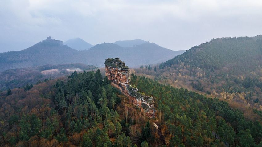 The Amselfelsen in front of Trifels Castle and Anebos, Palatinate Forest, Germany. Castle Pfälzerwald Rock Formation The Week on EyeEm Aerial View Beauty In Nature Day Landscape Mountain Nature No People Outdoors Pfalz Scenics Sky Tranquil Scene Tranquility Tree Trifels