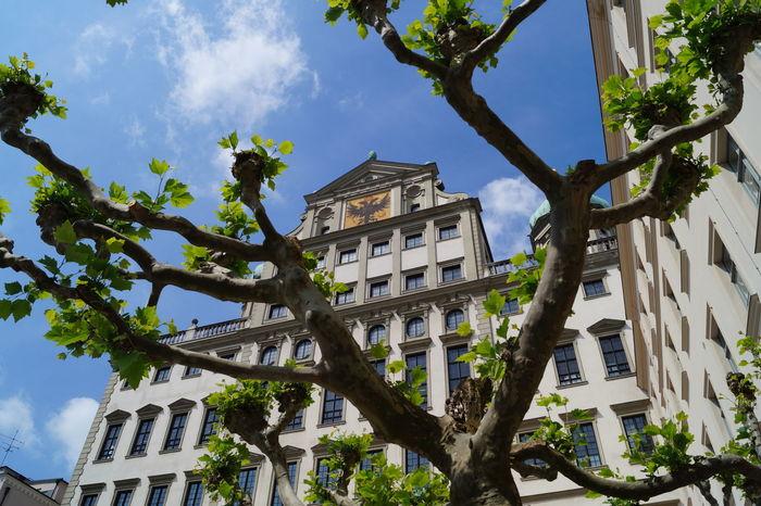 City City Hall GERMANY🇩🇪DEUTSCHERLAND@ Bayern Germany Bayern Augsburg Auxburg No People Outdoors