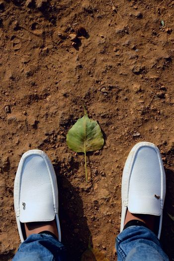 down and low. Leaf Leafs On The Ground Vivid Colours  Desi Wallpaper Nature Low Section Human Leg Real People Personal Perspective Sand Shoe Outdoors Human Foot High Angle View Directly Above Nature