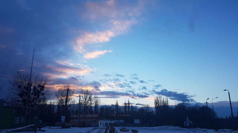 Sky Cloud - Sky Tree Cold Temperature Snow Winter No People Sunset Outdoors Nature Beauty In Nature Day