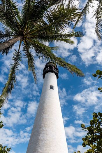 Low Angle View Architecture Palm Tree Tall - High Built Structure Sky Tower Cloud - Sky Tree Outdoors No People Day Building Exterior Branch USA Palm Beach Lighthouse Key Biscayne