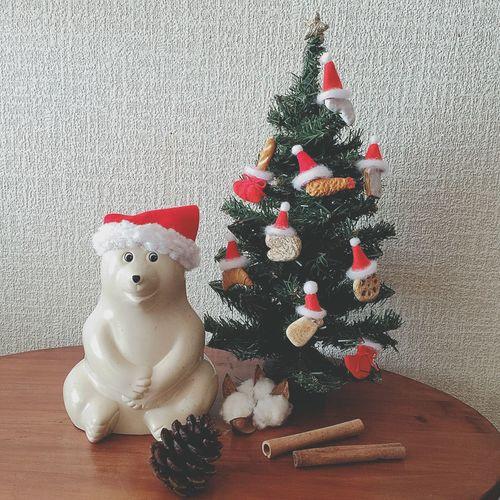 ブローチのクリスマスツリー 枯れ葉混じりのツリーに、やってみたかった飾りつけをしたよ↟✧ ブローチたちにサンタ帽を被せて、ちょっとだけ可愛くできた、自己満足のクリスマスツリー。笑 てっぺんには、忘れちゃいけないトップスターも飾ったよ☆ これからも、もりもりブローチを作って、ツリーの飾りにしていくんだヽ(*´∀`)ノ ぁー♪ かわいい。笑↟♡ クリスマス Christmas Xmas クリスマスツリー Christmastree サンタ帽 ブローチ Brooch ハンドメイド Handmade オーブン陶土 陶土 しろくま貯金箱 北欧雑貨 ぬい撮り ぬいどり ブローチのクリスマスツリー