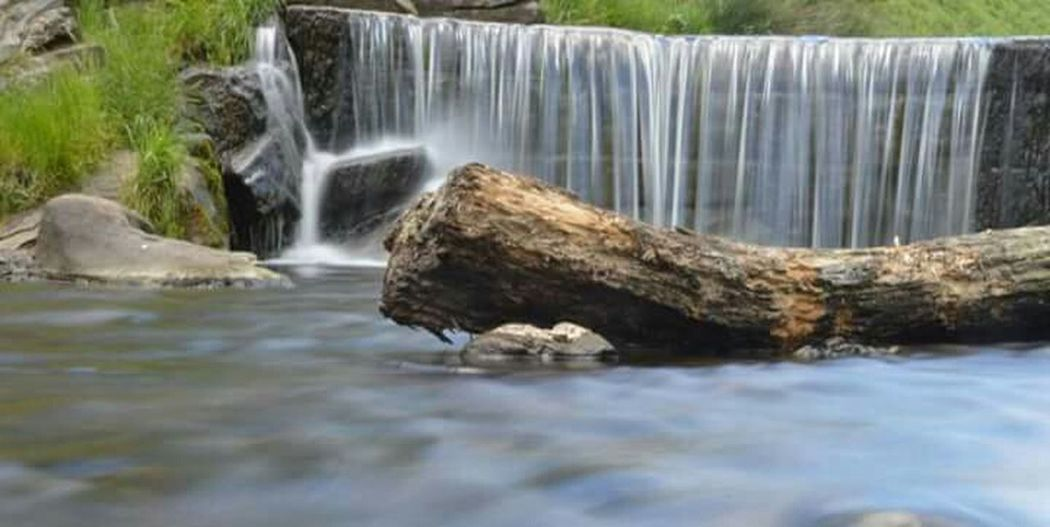 Park Bridge Water Nature