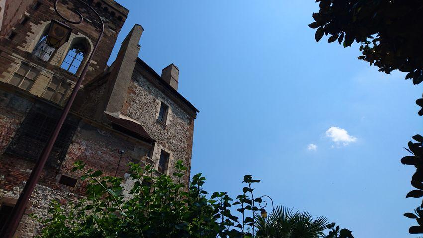 Le nuage égaré Architecture History Low Angle View Tree Blue Building Exterior Travel Destinations Built Structure Outdoors No People Sky day