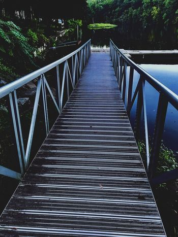 Bridging to Homeless Railing The Way Forward Direction Bridge Plant Architecture Tree Diminishing Perspective No People Built Structure Nature Connection Day Bridge - Man Made Structure Footbridge Outdoors Wood - Material Tranquility vanishing point Empty
