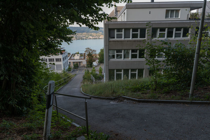 Zürichseerundweg Hiking Trail Waldweg Wanderweg Apartment Architecture Building Building Exterior Built Structure City Day Direction Footpath Forest Track Fußweg Growth House Nature No People Outdoors Plant Railing Residential District Road Switzerland Track Trail Transportation Tree Window