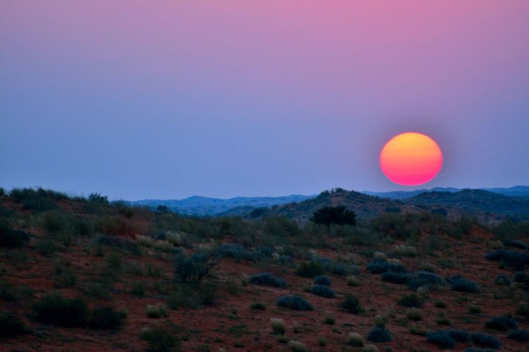 Kgalagadi sunset EyeEm Nature Lover Kalahari South Africa Sunset_collection Astronomy Beauty In Nature Desert Beauty Environment Horizon Kgalagadi Transfrontier Park Land Landscape Mountain Nature No People Outdoors Scenics - Nature Sky Sun Sunset Tranquil Scene Tranquility