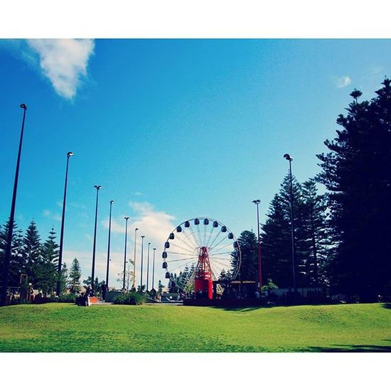 Fremantle - Perth Infreo Perthisok Perthlife Westisbest westernaustralia australia ferriswheel grass freo fremantle perth landscape instagramaustralia igaustralia