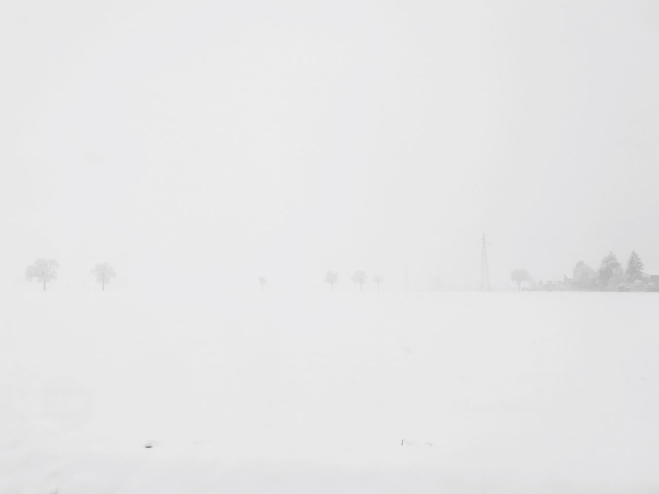 cold temperature, winter, snow, copy space, fog, beauty in nature, sky, tranquil scene, tranquility, environment, white color, nature, field, scenics - nature, no people, covering, land, landscape, non-urban scene, extreme weather, outdoors, snowing, climate, blizzard