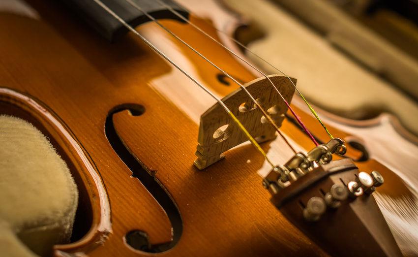 Violin Arts