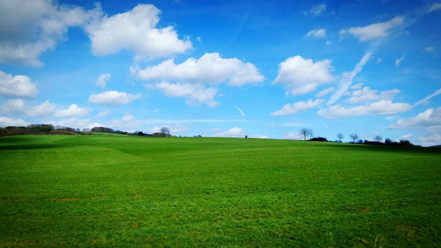 Scenic view of grassy field against cloudy sky