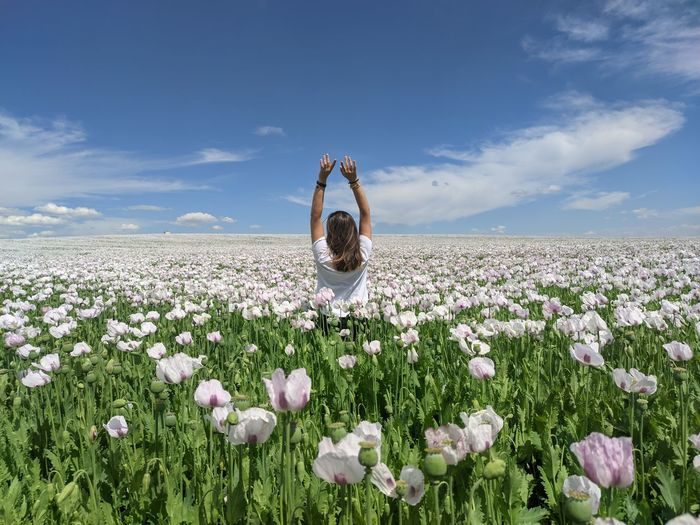 Woman with pink flowers on field against sky