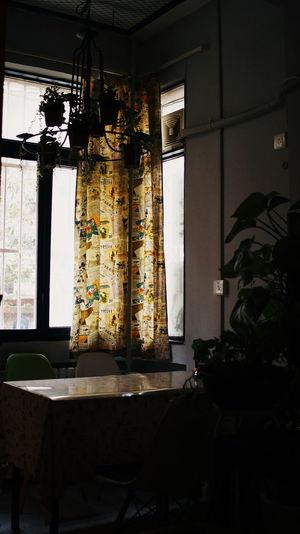 2016.05.24 일상 산책 카페 인테리어 빛 포토 포토그라피 스냅 스냅사진 Walk Cafe Interior Light Photo Photography Snap Sony Sony Nex6 Nex6 Minolta MD Minolta Md W.rokkor-x 28mm F2.8