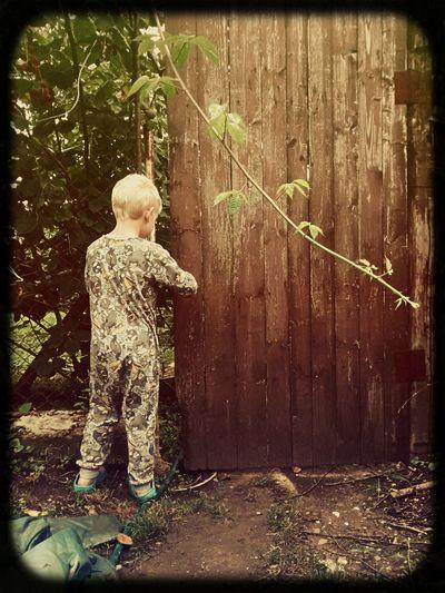 In The Secret Garden Through The Garden Gate Just Imagine Beyond Boundaries
