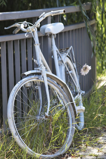 Architecture Bicycle Boundary Close-up Day Fence Field Flower Focus On Foreground Grass Growth Land Land Vehicle Metal Mode Of Transportation Nature No People Outdoors Plant Stationary Transportation Wheel