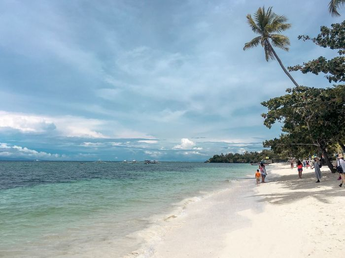 Beach Sea Land Sky Water Tree Cloud - Sky Scenics - Nature Nature Sand Beauty In Nature Holiday Vacations Trip