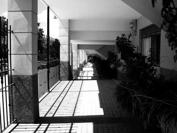 Porch Black And White Blackandwhite Building Building Exterior Built Structure Corridor Day Direction Entrance Footpath Houseplant Light And Shadow Luxury Monochrome No People Outdoors Plant Potted Plant Residential District Sunlight Tiled Floor Tree