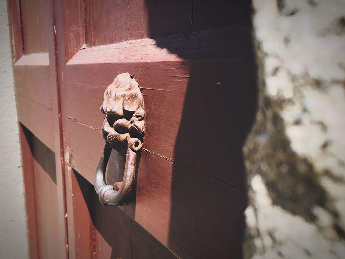 High angle view of lion head knocker on door