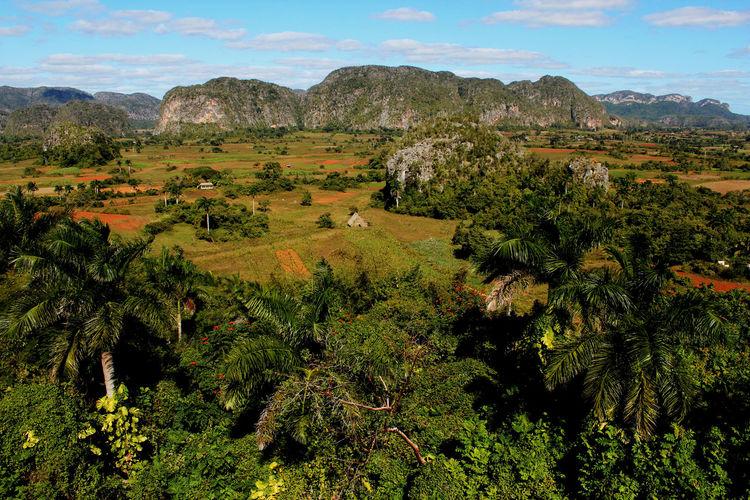Cuba Mogotes Viñales Cuba Travel Travel Photography Traveling Viñales Viñales Valley, Cuba Beauty In Nature Day Green Color Idyllic Land Landscape Mountain Nature No People Non-urban Scene Outdoors Scenics - Nature Tranquil Scene Tranquility Travel Destinations Travelphotography Viñales Valley