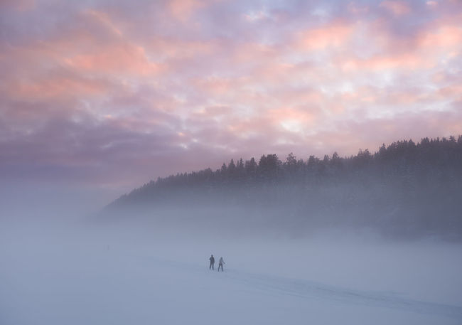 Two skiers on a frozen, misty lake. Oslo, Norway. Winter Sky Beauty In Nature Scenics - Nature Snow Cloud - Sky Nature Environment Non-urban Scene Fog Tranquil Scene Sunset Real People Tranquility Leisure Activity Outdoors Adventure Beautiful Clean Pristine Landscape Cross Country Skiing Wilderness Ski Skiing EyeEmNewHere
